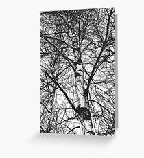 White sky Greeting Card