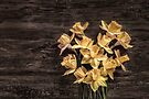 For the love of spring by Sara Sadler