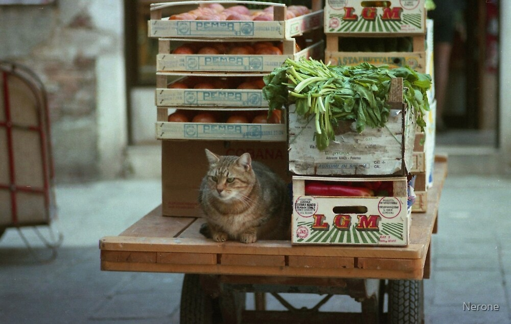 The Greengrocer by Nerone