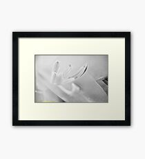 Ghost Flower. Framed Print
