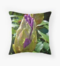 Rhode Island Rhododendron - Budding © 2010 Throw Pillow