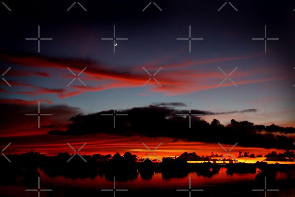 Under A Crescent Moon by Varinia   - Globalphotos