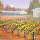 Caversham Vineyard by David Hinchliffe