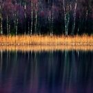 Colours of the Loch by David Mould