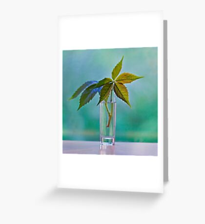 Green light Greeting Card