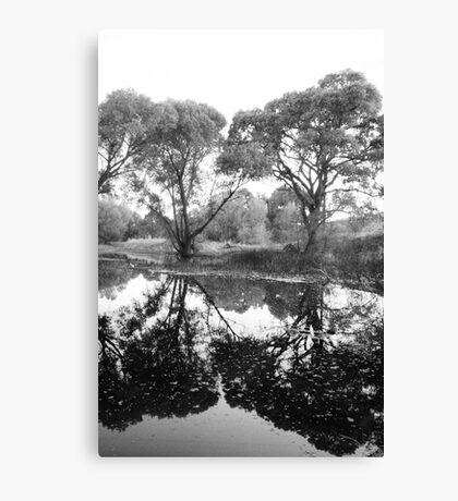 Tree Vanity Canvas Print