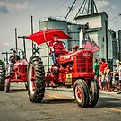 Independence Day Parade by Steve Baird