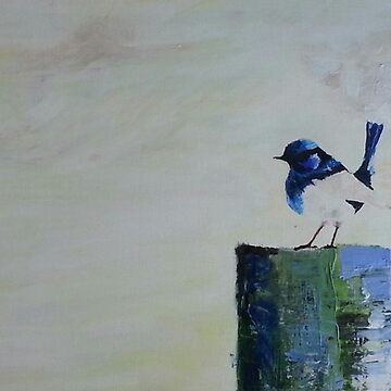 Blue Wren by Rachel3