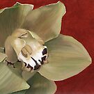 orchid 3 by cathy savels