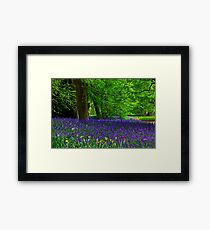 Bluebell Wood - Thorpe Perrow #1  (Spring) Framed Print