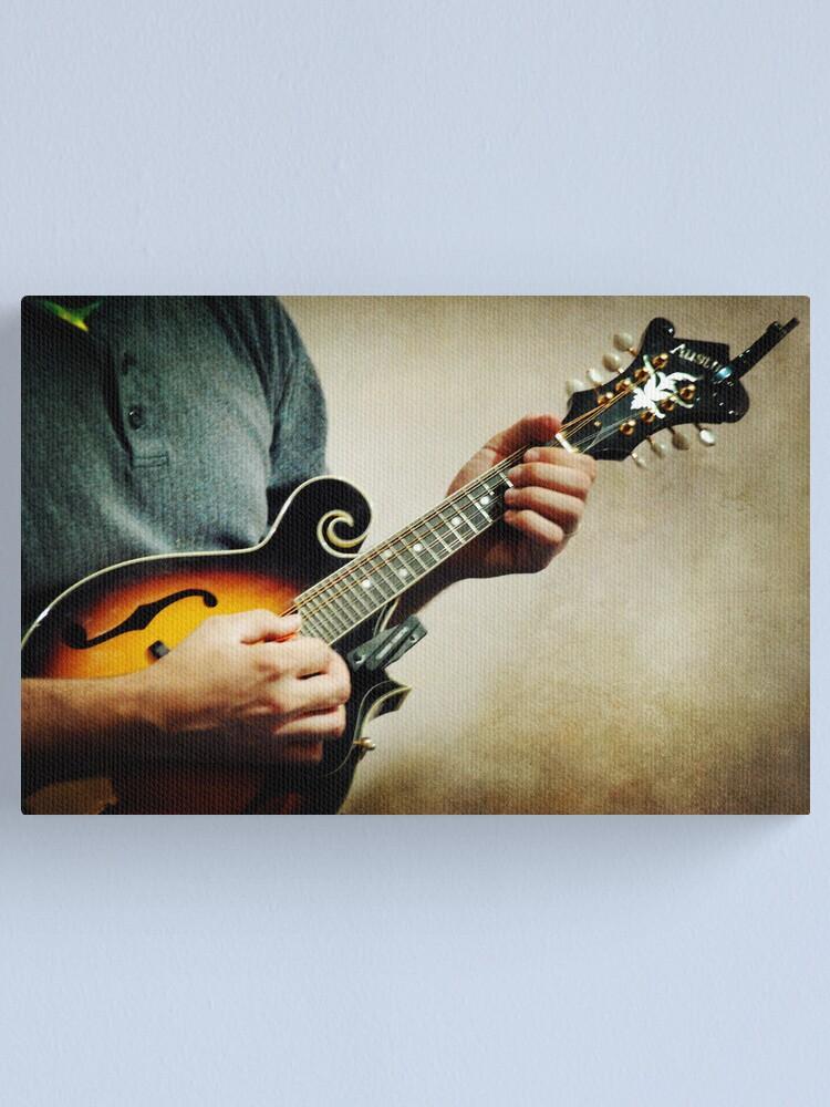 Alternate view of Mandolin Canvas Print