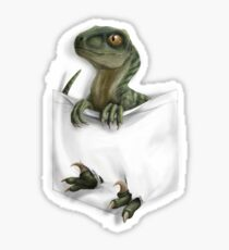 Pocket Protector - Charlie Sticker
