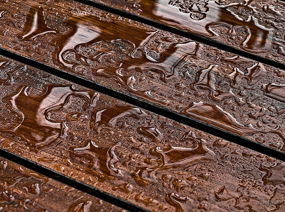 Wet Wood by awefaul