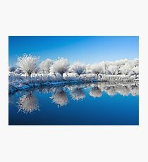 Winter White In Reflected Blue Photographic Print