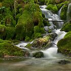 Grza waterfall by aleksandra15
