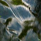 River Grza by aleksandra15