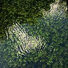 Green river Grza by aleksandra15