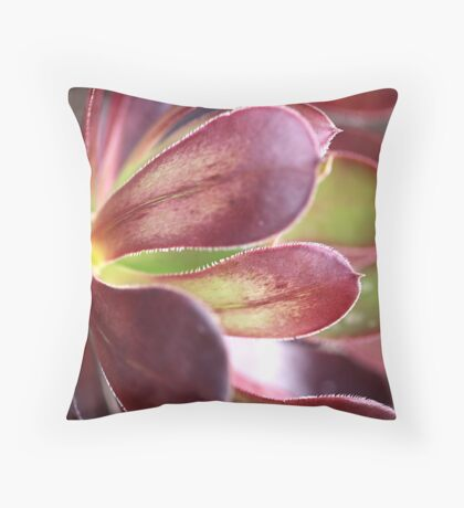 Purple Aeonium Throw Pillow