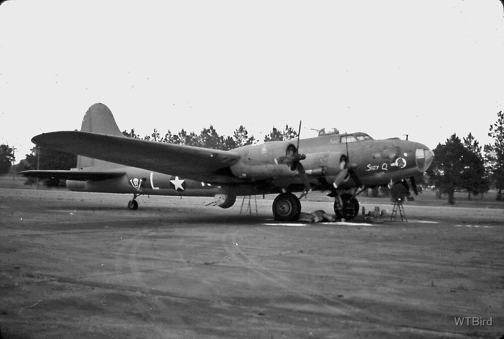 B17 Flying Fortress by WTBird