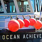 Fishing Boat Bumpers by Lesliebc