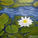 Nénuphars - Water Lilies by Dominic Beaudoin