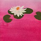 Pink Lotus Flower by pinxnpurples