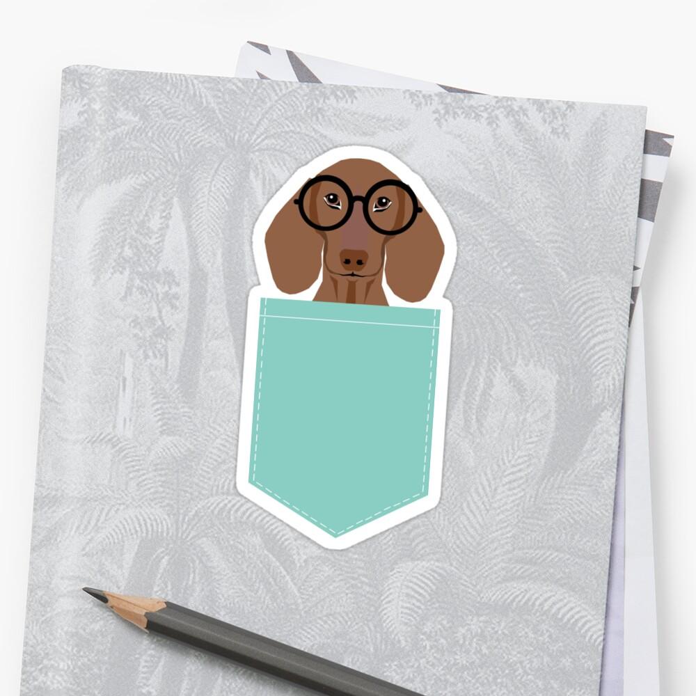 Remy - Fashion Glasses Doxie Dashcund Hipster Dog  Sticker