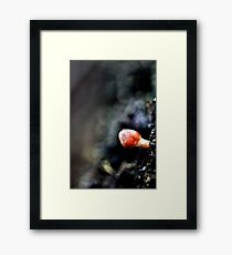 Small World Of Red Framed Print