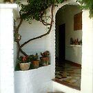 Welcoming Doorway by chrissylong