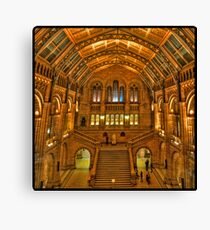 Natural History Museum, London Canvas Print