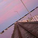 Magic dusk light. by Nick Hunt