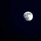 Full moon by Gili Orr