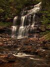 Ganoga Falls by Aaron Campbell