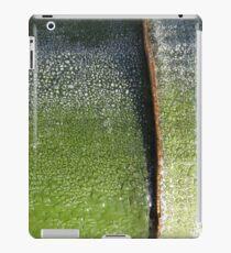Aurora bamboo iPad Case/Skin