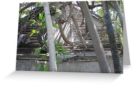 Vanishing Key West by JosephKrygier