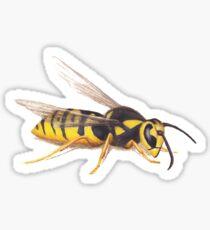 The Wasp Sticker
