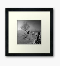 Tough winter Framed Print