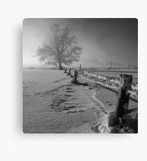 Tough winter Canvas Print