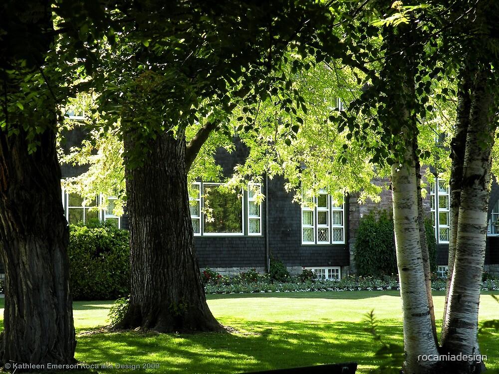 Conrad Mansion 2 by rocamiadesign