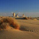 new white desert  egypt by Ty Cooper