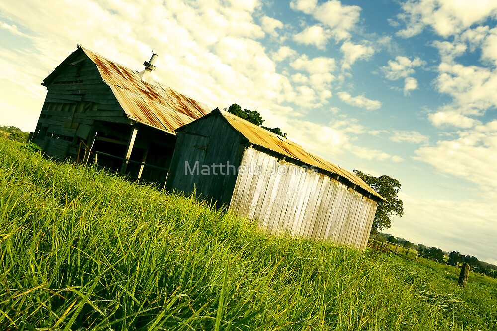 Timberland #2 by Matthew Jones