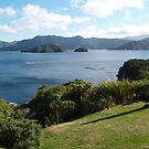 Marlborough sound - New Zealand by redkitty