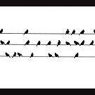 Vogelgesang von Sue Purveur