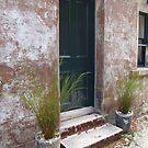 Larnarch Castle gardens- Dunedin New Zealand by redkitty