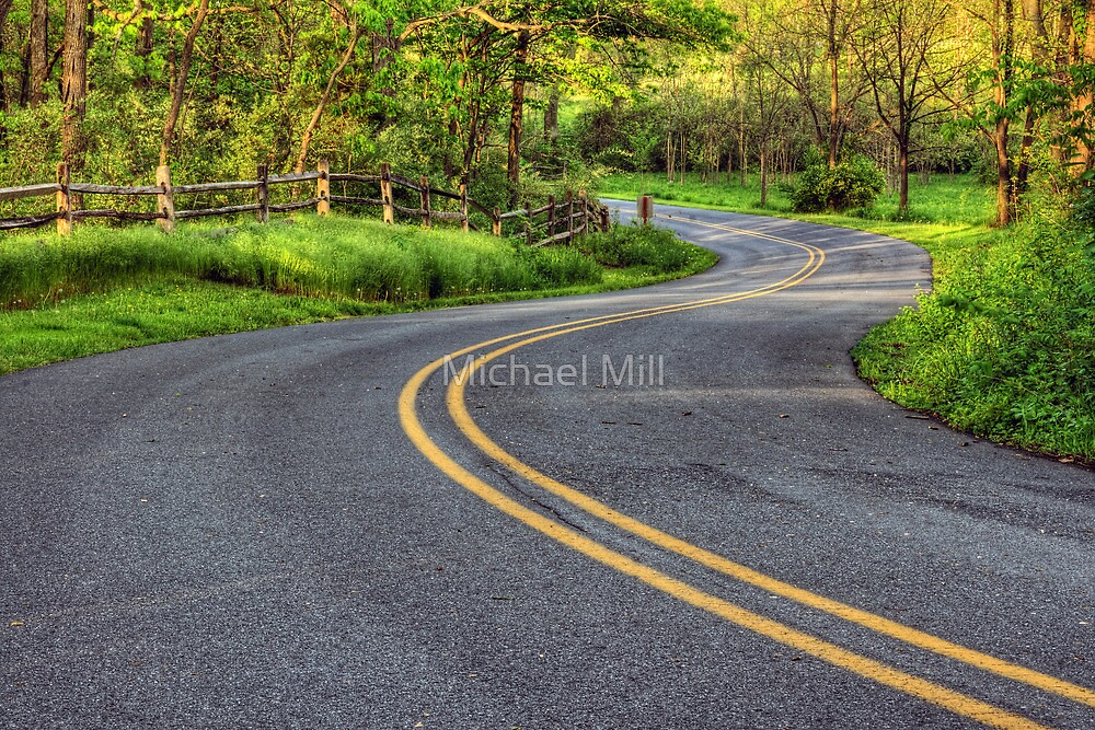 Winding Country Road by Michael Mill