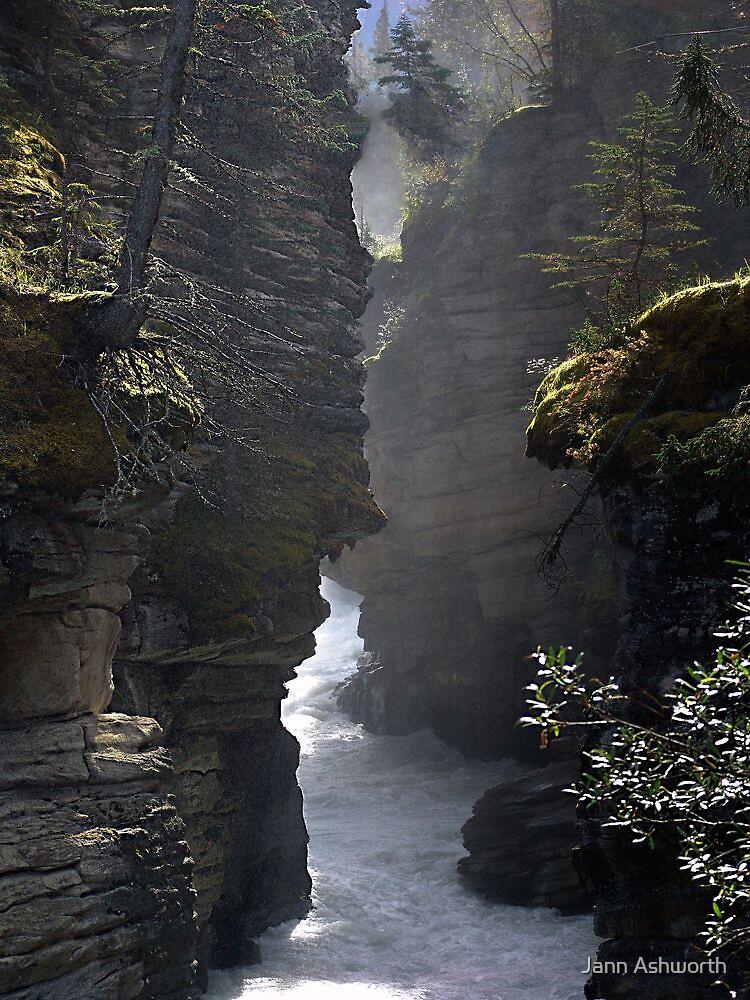 Athabasca Gorge (5) by Jann Ashworth