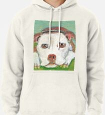 Those Pitbull Eyes Pullover Hoodie