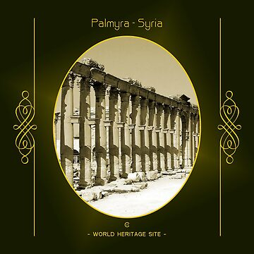Palmyra World Heritage Site In Syria by vysolo