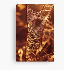There's a hole in my web....! Canvas Print