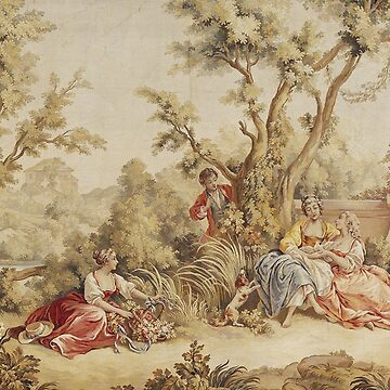 Aubusson Tapestry French 18th Century by CarlosV